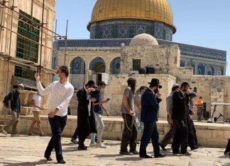 Imigran ilegal Yahudi nodai Masjid Al-Aqsa. dalam aksinya, mereka menggelar ritual Talmud di Bab Ar-Rahmah.