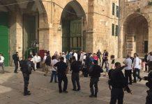 Ratusan Imigran Gelap Yahudi Nodai Masjid Al-Aqsa