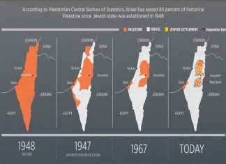 Sejak 1948, Israel telah Rampas 85 Persen Tanah Palestina